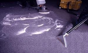 Чистка ковров: основные способы очистки ковров своими руками